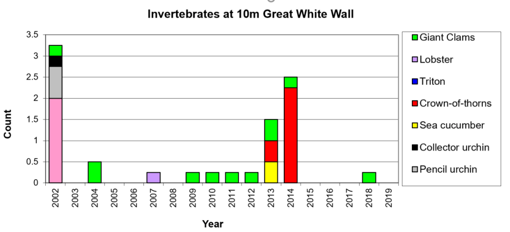 Figure 16:  Invertebrates 10m Great White Wall -  Taveuni - Rainbow Reef