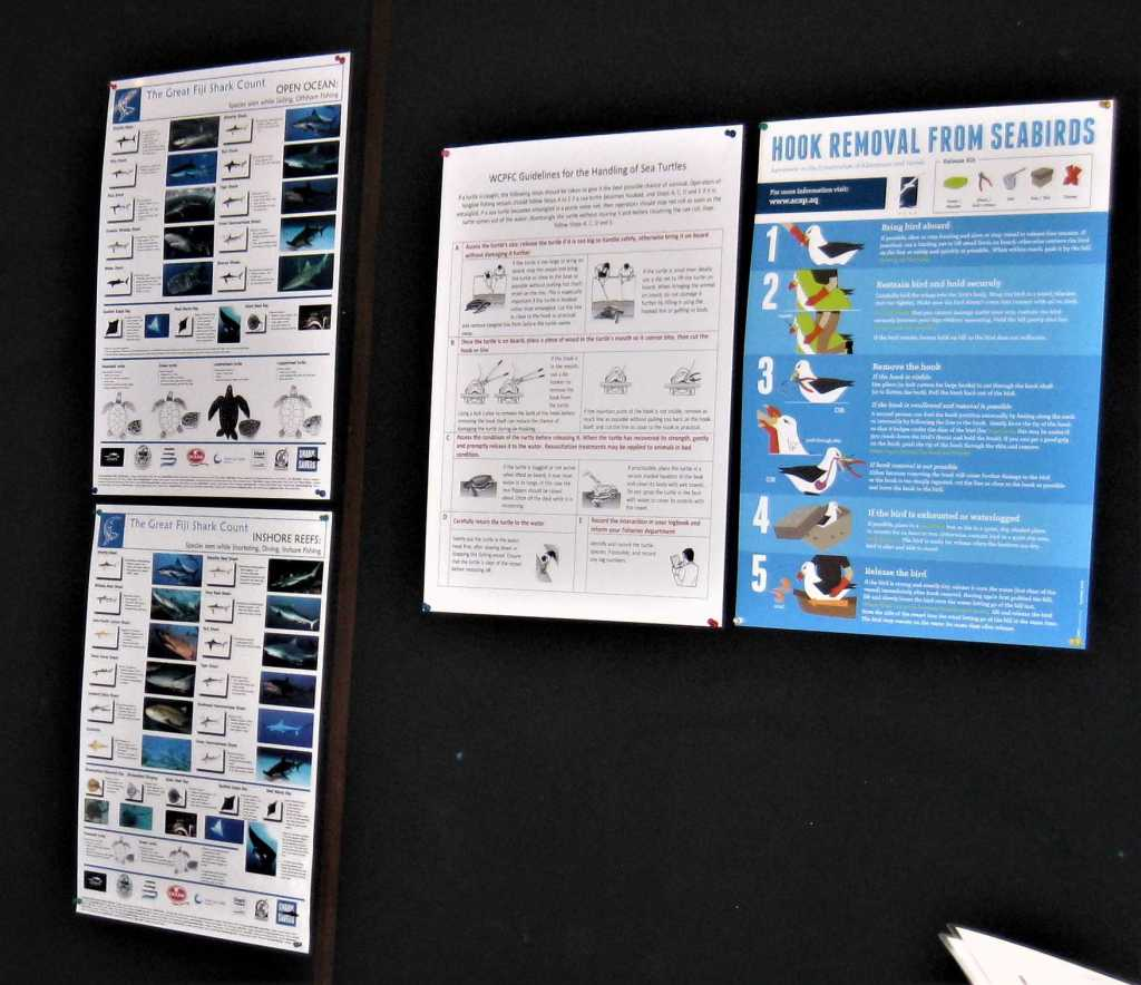 Inshore and offshore species posters from the Great Fiji Shark Count, alongside information on how to release turtles and seabirds caught in fishing gear