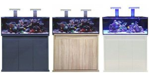 marine fish shop D-D Reef Pro Range