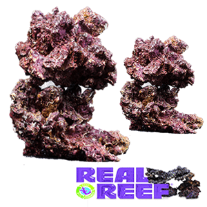 Real Reef Rock Premium