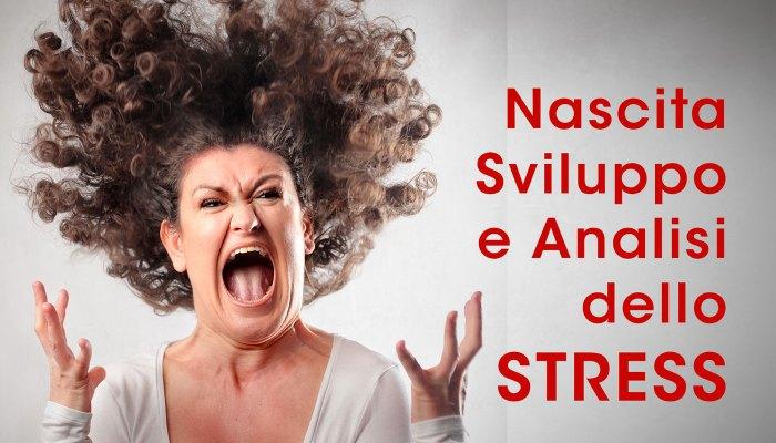 Nascita, sviluppo e Analisi dello STRESS