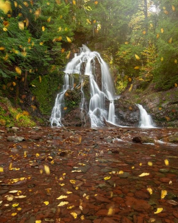 Cascada con hojas cayendo en otoño