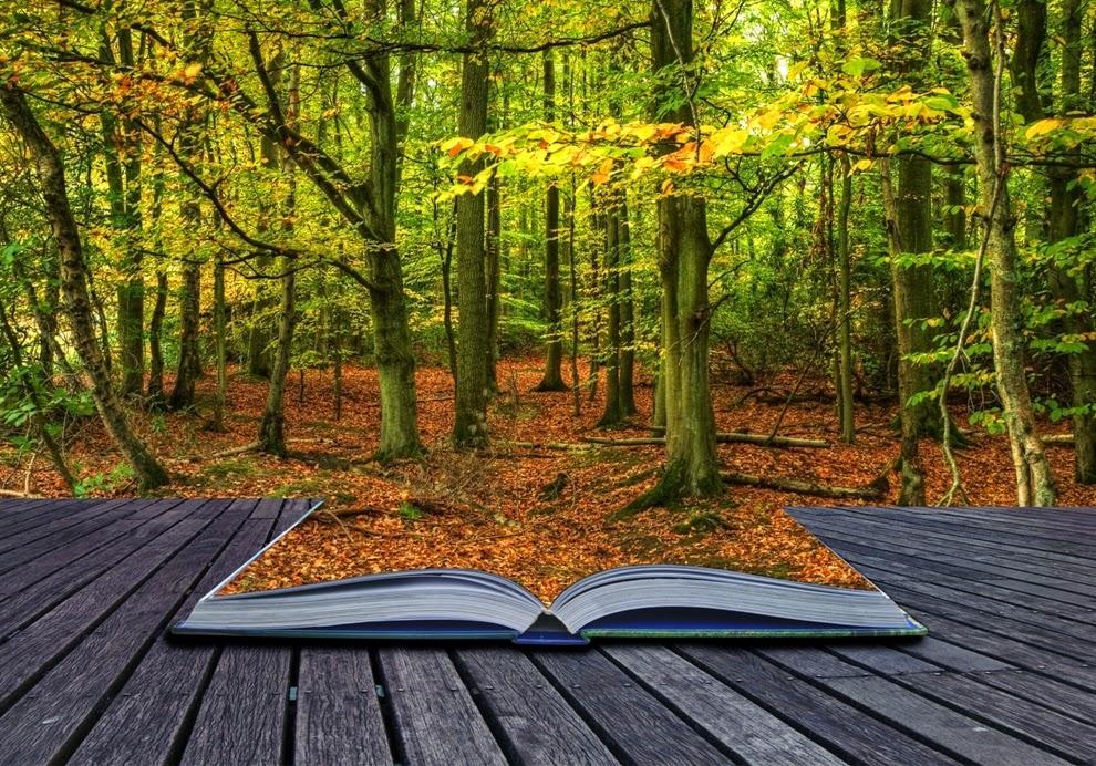 bosque-de-libros