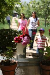 phot of some Visitors at the Massaya Winery