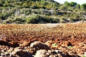 terre après labour superficiel