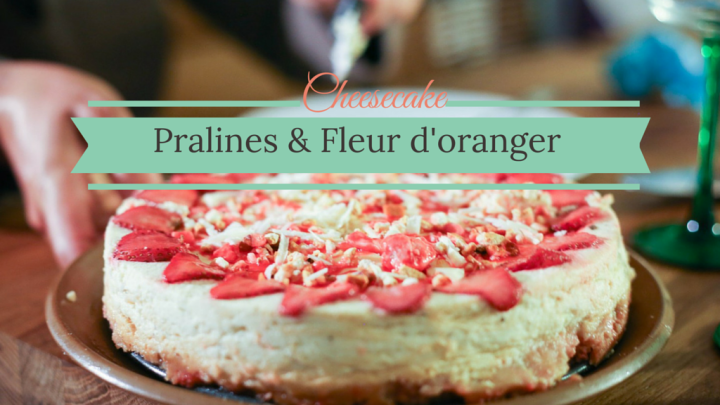 """Provencal"" Cheesecake (with orange blossom & pink pralines)"