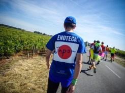 Marathon-du-Medoc-2014 (50 sur 101) (Large)