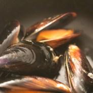macaronade-au-poisson-de-sete (3 sur 38) (Large)