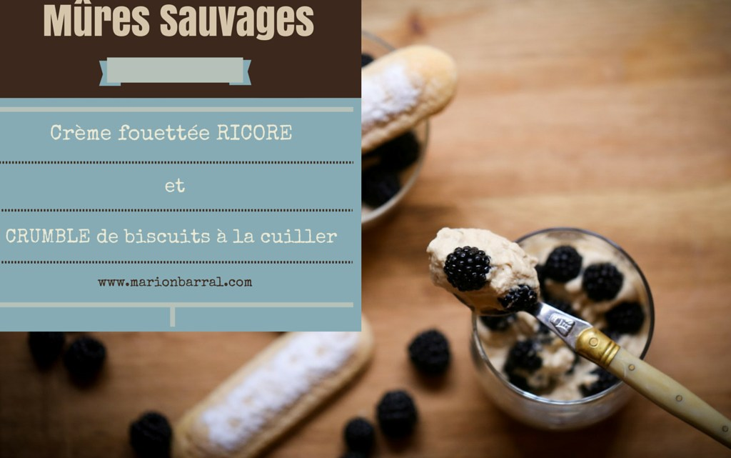 Wild Blackberries & Camp Coffee Mousse French Verrine