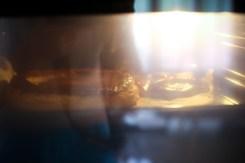 vol-au-vent-ragout-escoubilles (3 sur 8) (Large)