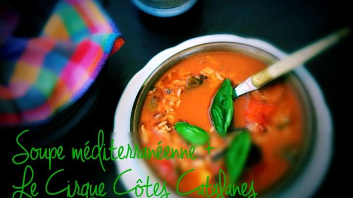 Mediterannean soup + Le Cirque Côtes Catalanes