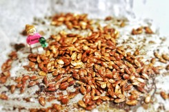 graines-de-courge-grillees-aux-epices (3)