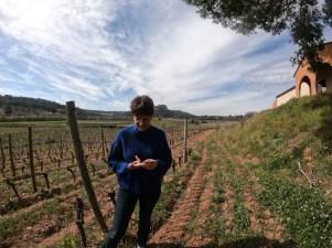 Christine dans les vignes