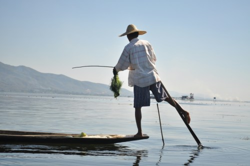 Lac Inle pecheur 2