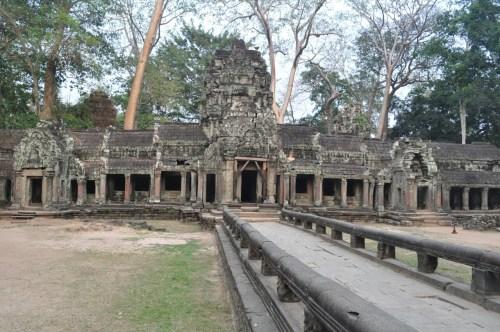 Angkor Ta Prohm 10