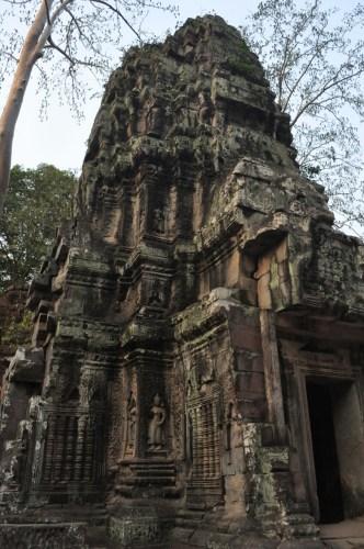 Angkor Ta Prohm 9