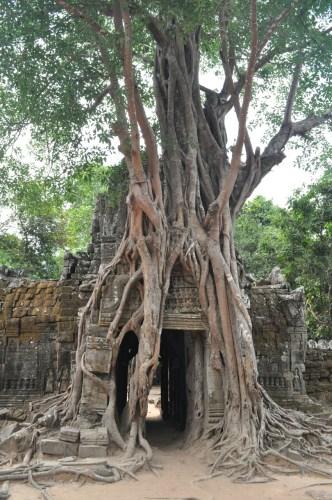 Angkor Ta Som 1