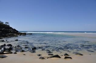 Noosa Alexandria Beach_1_0812
