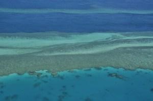 Survol barriere de corail Airlie Beach 3 0803
