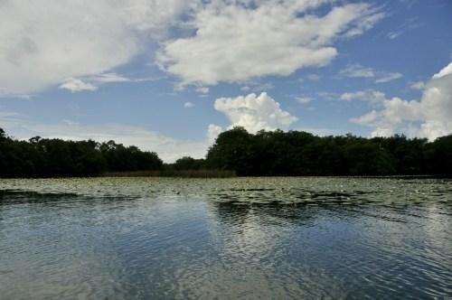 Rio Dulce 2