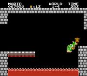 List Of Super Mario Bros Glitches Super Mario Wiki The