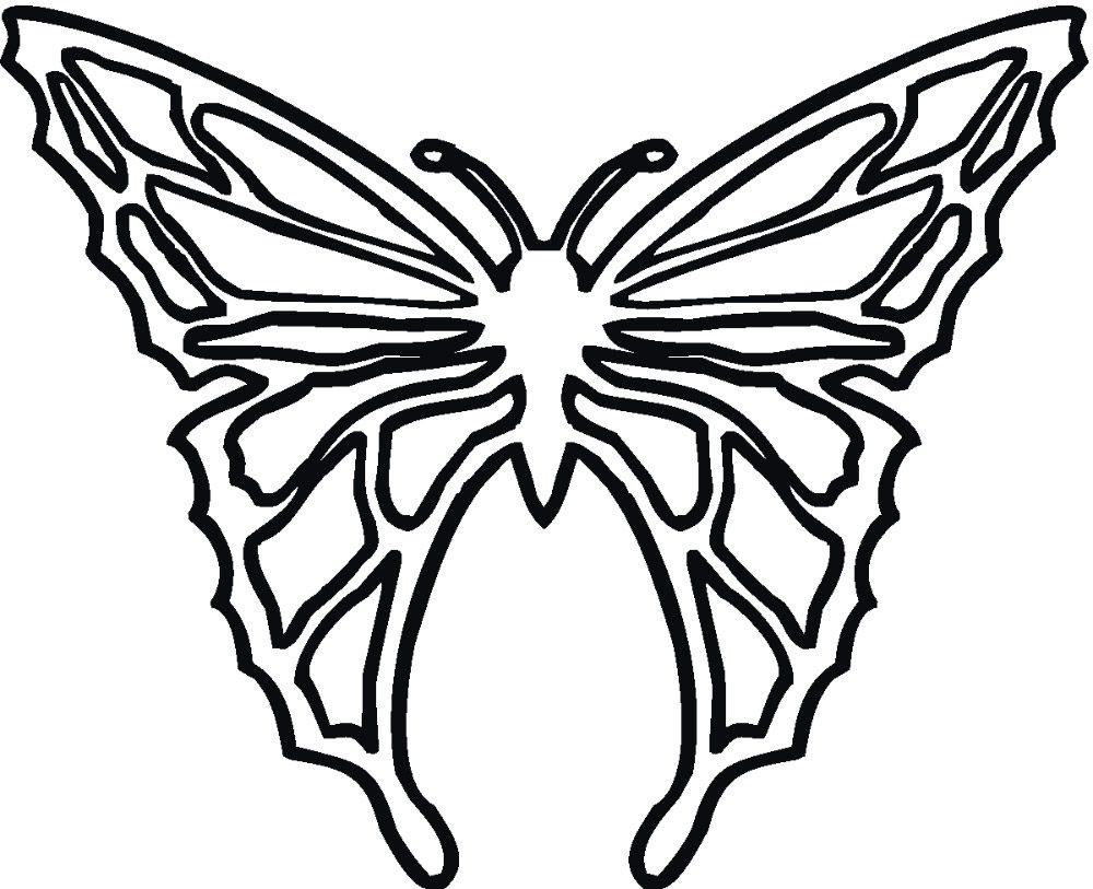 Mariposa dibujada para colorear :: Imágenes y fotos