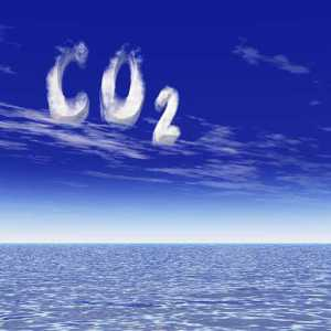carbon dioxide capture and storage