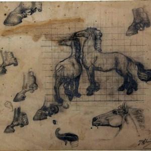 C-032 – 1948 paardenstudie