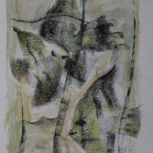 E-010 – 1965 Vissen