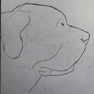 G-022 – Hondenkop, Sigurd wellicht