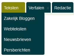 webteksten aparte pagina's producten