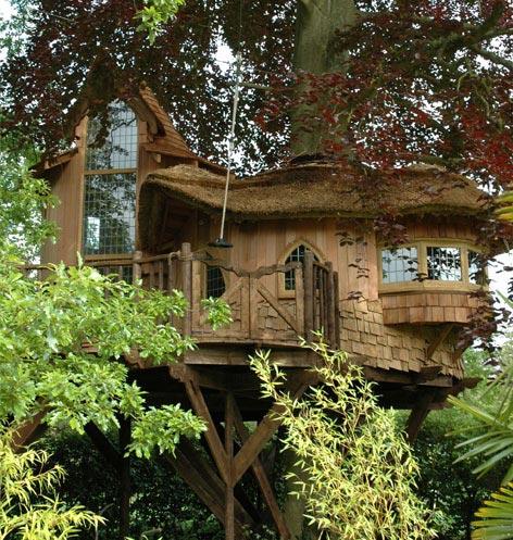 Tree House, Santa Monica, California