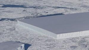 Rectangular Iceberg Virus
