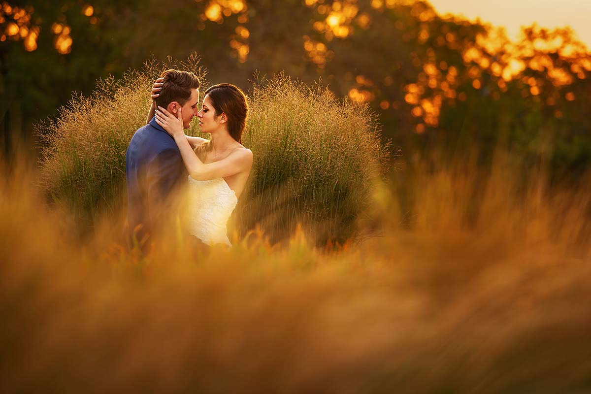 wedding couple in love momentum, golden picture