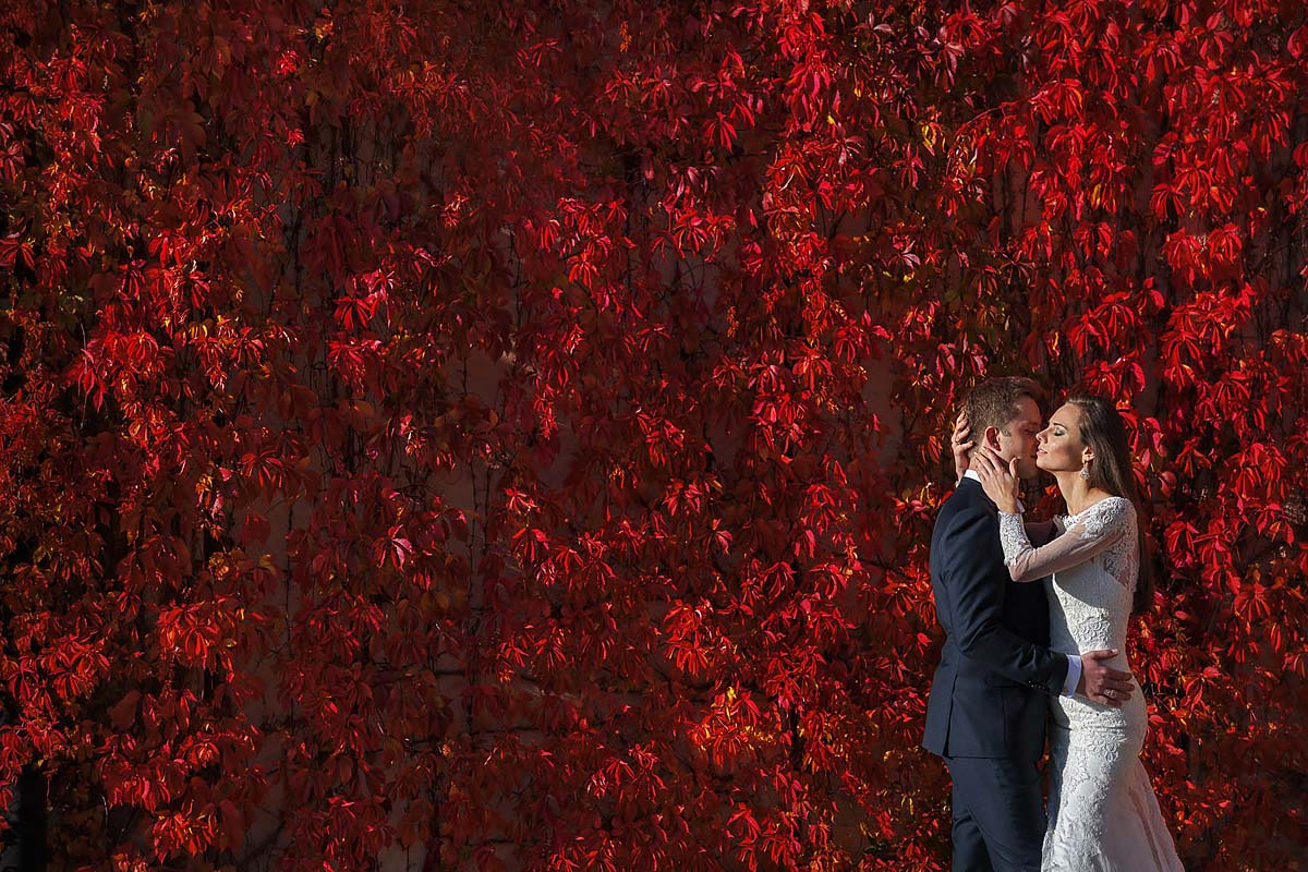 couple is kissing, red background