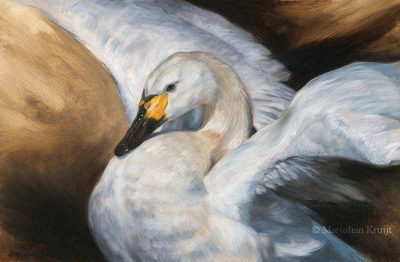Vogel schilderijen en vogelkunst door Marjolein Kruijt