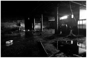 stephenson_brothers_basement_sm.jpg