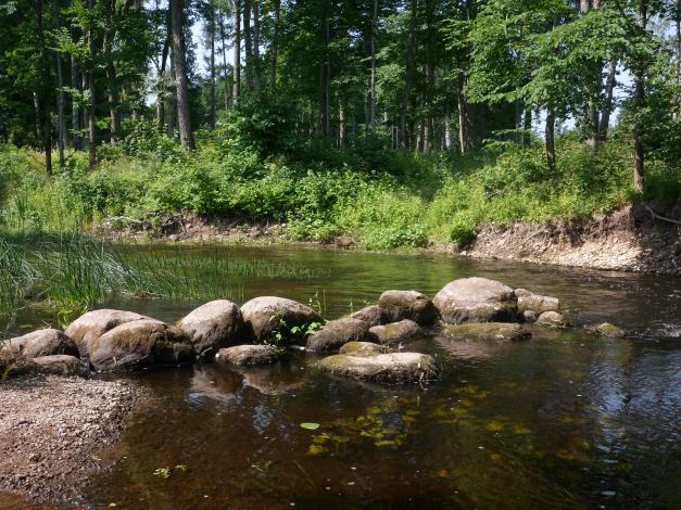 Stream, rocks, and sun
