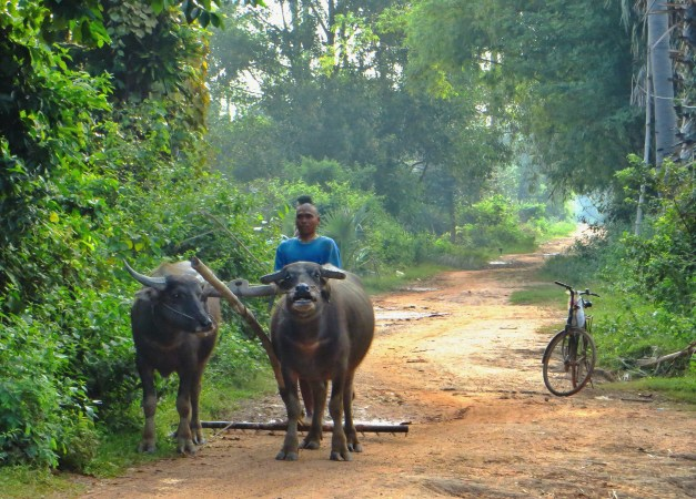 Farm workers on our path out of Siem Reap
