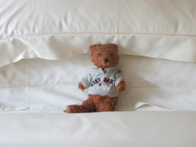 Finally, Boston Bear has been complaining that he's not getting enough photo space in our blog, so here he is resting after a big night out in Cannes