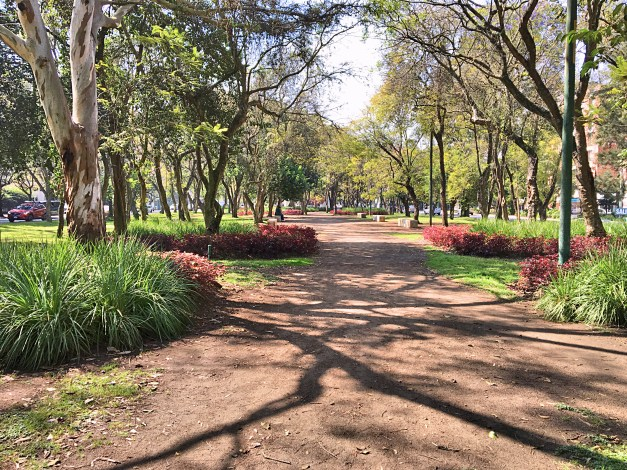 The green space parkway that lies between the north- and south-bound lanes of the Avenue of the Americas made for great walking and running (though, to be honest, most of it wasn't this pretty)