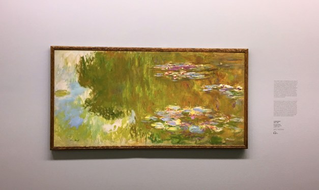 "Vienna is great art. This was from a ""Monet to Picasso"" exhibit, not unlike the one we saw in Genoa. Having just been in Giverny, though, I enjoyed the lily pond that much more"