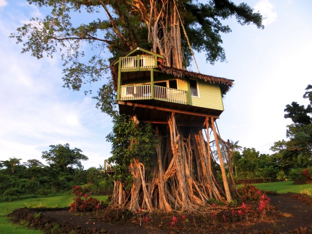 The Lupe Sine Treesort, a unique and fascinating place to stay