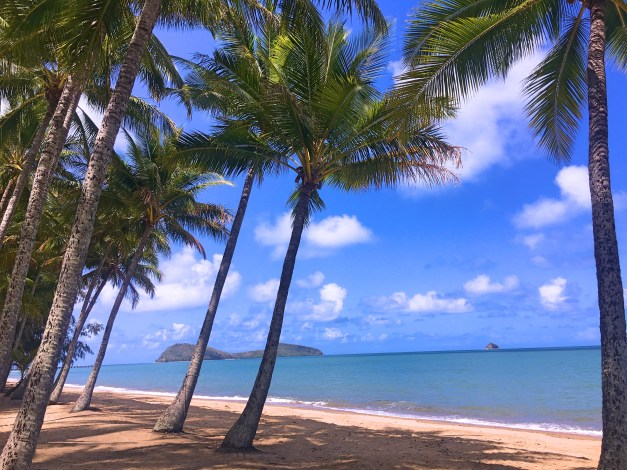 Palms, sand, and the Coral Sea