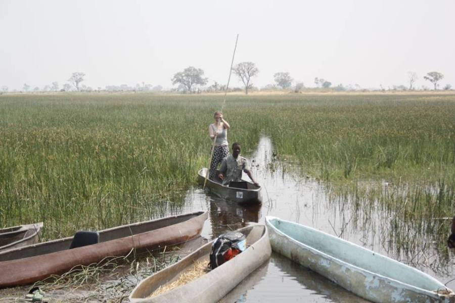 Punting in the Okavango Delta in a mokoro canoe