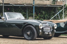 Austin Healey Wilton Wake Up