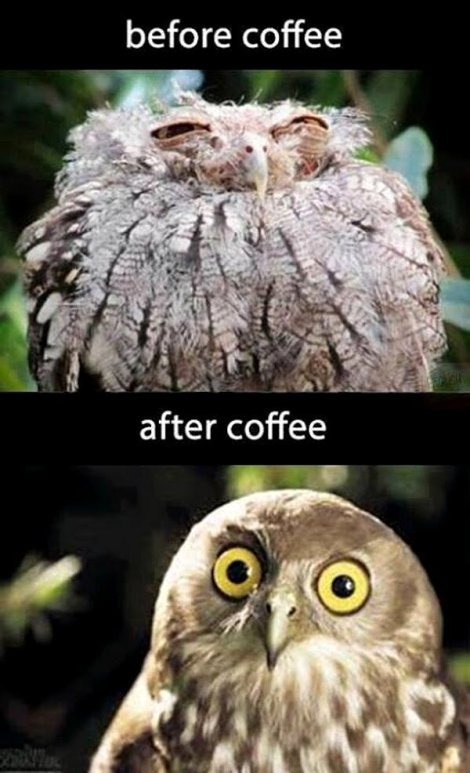Before-coffee