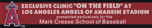 angel-baseball-clinic