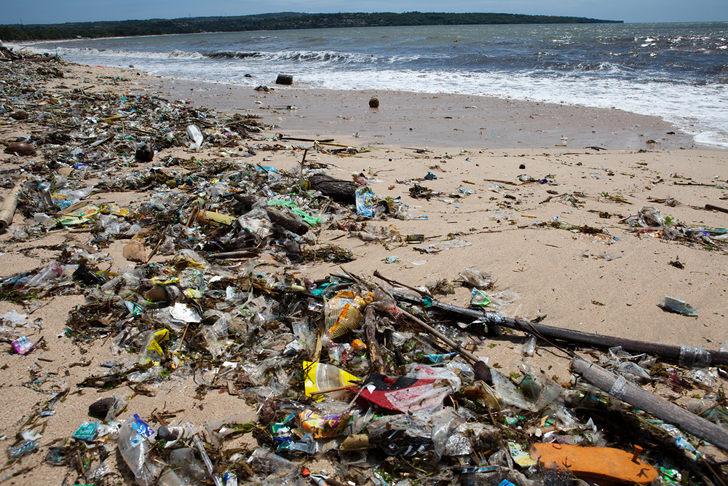 ocean-plastic-toxic-absorb