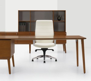Home Office Desk Features